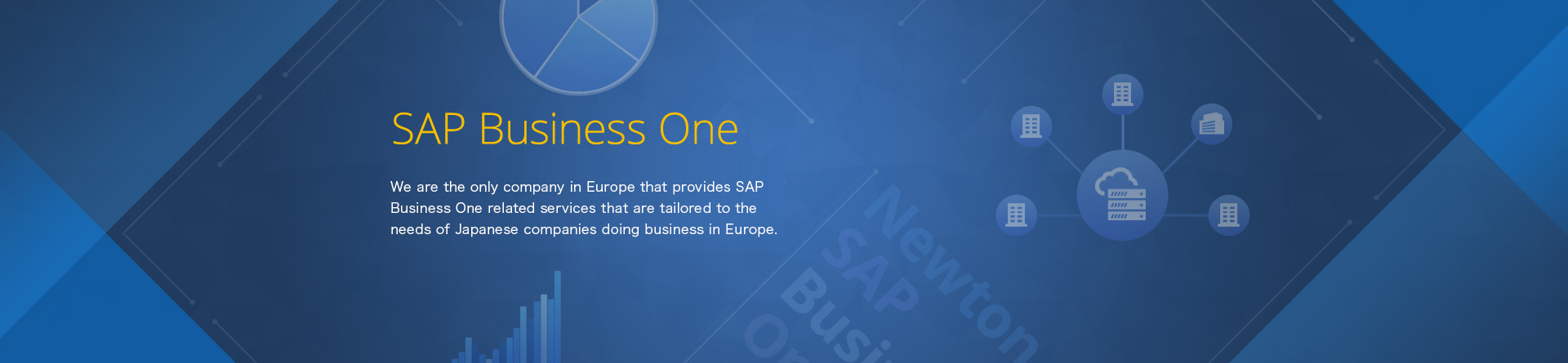 /solutions/sap_business_one/